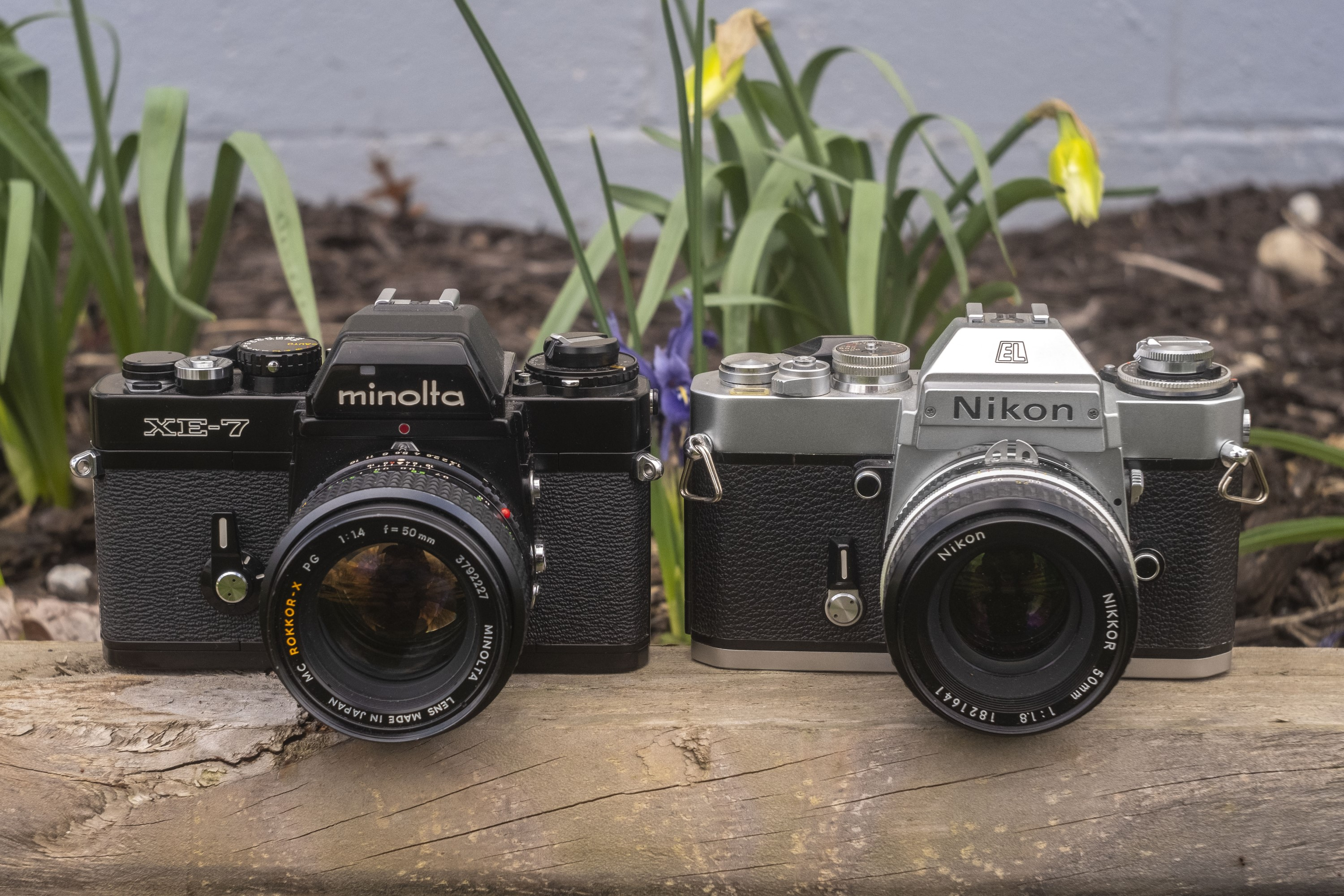 My Favorite SLR Showdown: Nikon EL2 vs Minolta XE-7